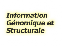 Information Génomique & Structurale