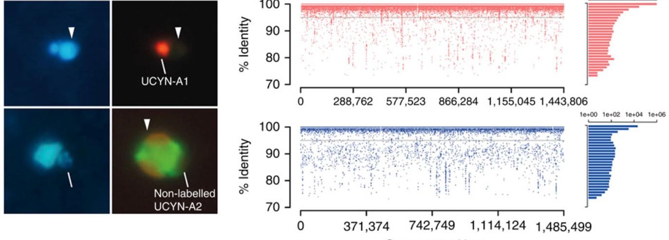 Nouvelle publication OCEANOMICS dans Nature Communications